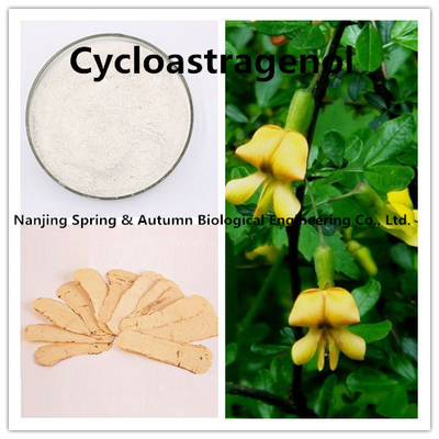 98% Purity Astragalus Membranaceus Ginseng Root Extract Powder 78574-94-4